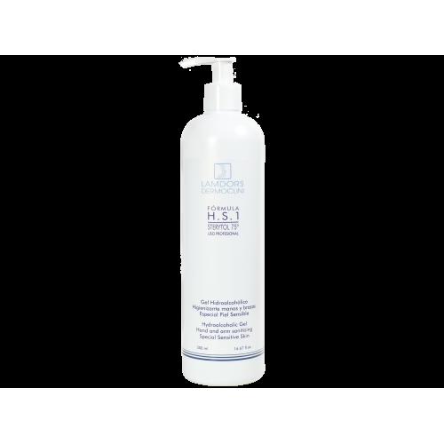 Hydroalcoholic Gel H.S.1 STERYTOL 4.67 fl oz